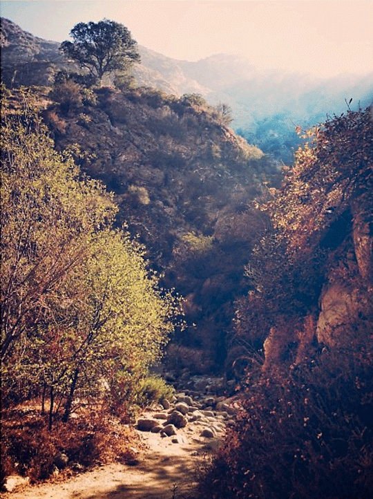 eaton-canyon-stephanie-fraide.png